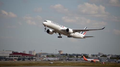 DIRECT. Réforme des retraites : deux syndicats appellent les pilotes, hôtesses et stewards d'Air France à la grève la semaine prochaine