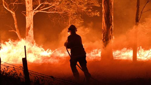 Glaciers bruns, faune, navire de guerre... Les surprenantes conséquences des incendies qui ravagent l'Australie