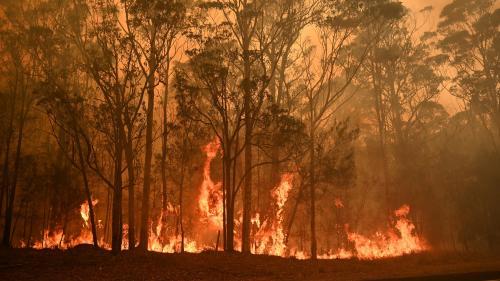 Incendies : l'Australie évacue des milliers d'habitants et mobilise 3 000 militaires réservistes