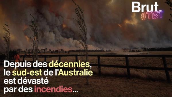 VIDEO. 1939, 1983, 2009… Depuis des décennies, le sud-est de l'Australie est dévastée par des incendies...