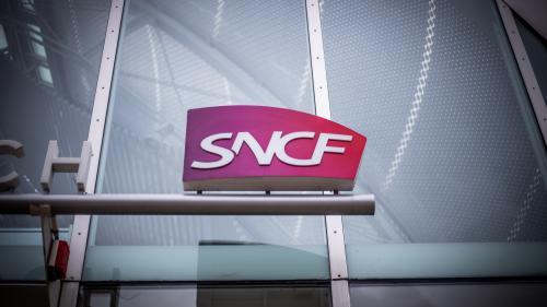 Réforme des retraites : comment la SNCF va-t-elle combler le milliard d'euros perdu pendant la grève ?