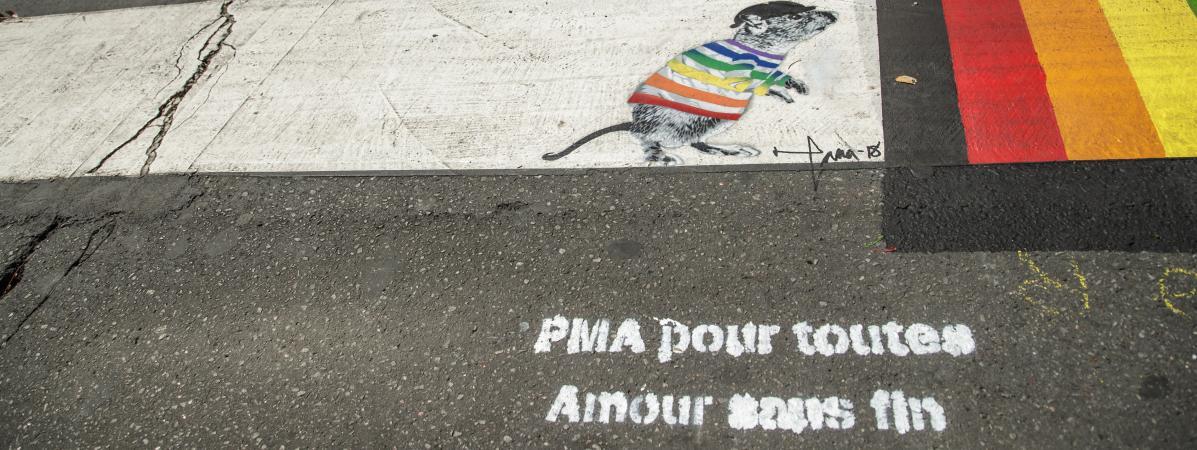 """Manifestation contre la PMA pour toutes les femmes : """"Les messages haineux"""" sont """"nourris par la méconnaiss..."""