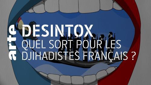 Désintox. Rapatriement des djihadistes français : différents sons de cloche au sein du gouvernement.