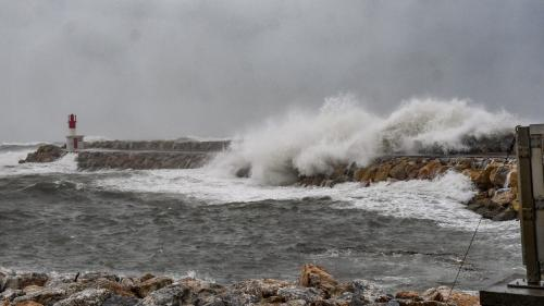 EN IMAGES. Vague de huit mètres, chutes de neige, inondations... La tempête Gloria frappe le sud de la France et l'Espagne