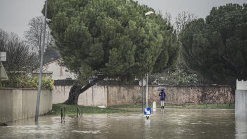 Tempête Gloria : seule l'Aude est maintenue en vigilance orange pour crues et inondations, fin d'alerte dans les Pyrénées-Orientales