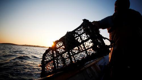 VIDEO. Brexit : les pêcheurs britanniques ne veulent plus partager leurs eaux