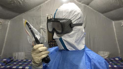 DIRECT. Coronavirus 2019-nCoV : l'OMS lance un appel de fonds de 613 millions d'euros pour lutter contre l'épidémie