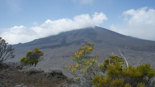Le Piton de la Fournaise est entré en éruption lundi 10 février, une première en 2020