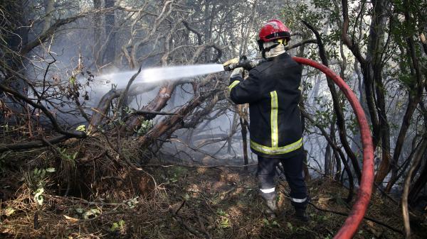 Corse : des incendies sous contrôle grâce aux moyens aériens