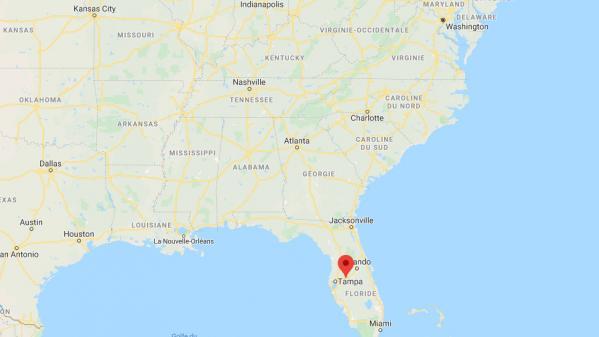 Etats-Unis : en Floride, une ville ferme une partie de son parc pour laisser les serpents s'accoupler
