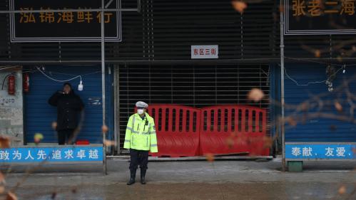 """La Chine interdit """"complètement"""" le commerce et la consommation d'animaux sauvages"""