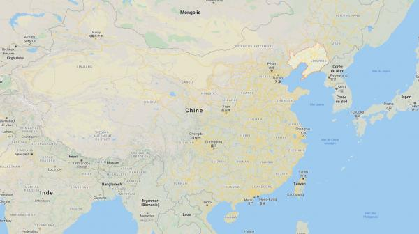 Le plus ancien fossile végétal vert, vieux d'un milliard d'années, découvert dans le nord de la Chine