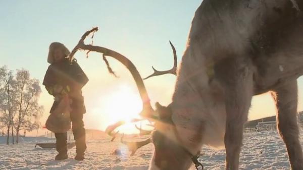Laponie : le combat des Samis, éleveurs de rennes