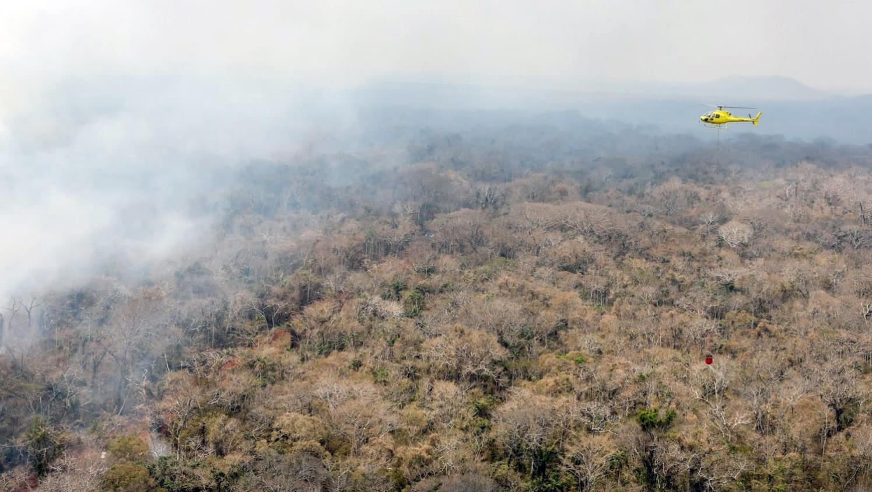 En Colombie, les incendies se multiplient dans la forêt amazonienne