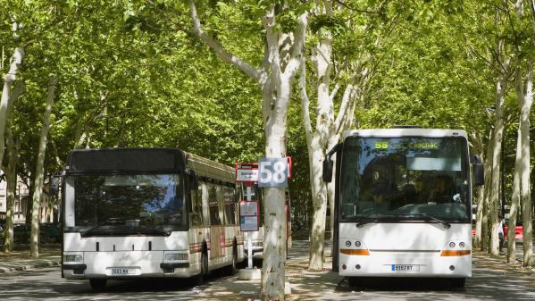 """Ile-de-France : des chauffeurs de bus exercent leur droit de retrait pour """"ne pas être complices du transport du coronavirus"""""""