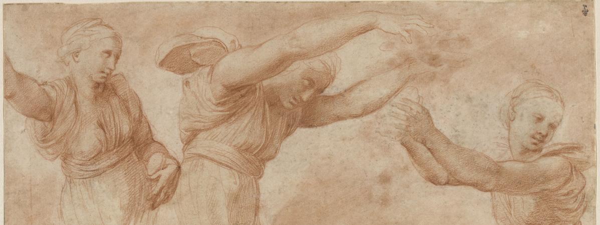Le Maitre Raphael Prodige Du Dessin Au Coeur D Une Exposition