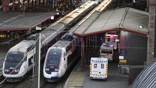 DIRECT. Coronavirus : 38 malades seront transférés hors d'Ile-de-France par TGV mercredi
