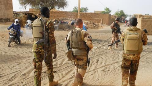 DIRECT. Coronavirus: l'état-major des armées annonce quatre premiers cas parmi les soldats de l'opération Barkhane