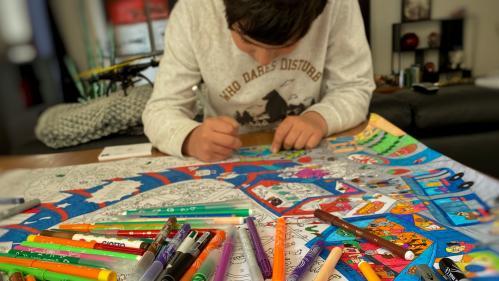 """Des pédopsychiatres et psychologues créent une ligne d'urgence pour """"répondre à la souffrance psychique des enfants et des familles"""" pendant le confinement"""