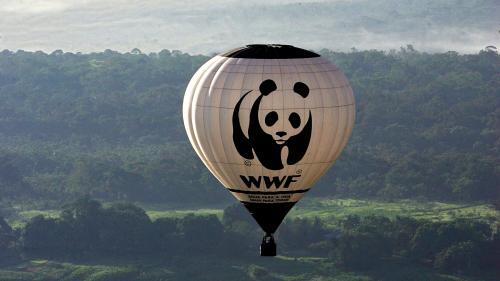 Le WWF lance un appel pour que la France adopte un filet de sécurité afin de gérer la crise du Covid-19