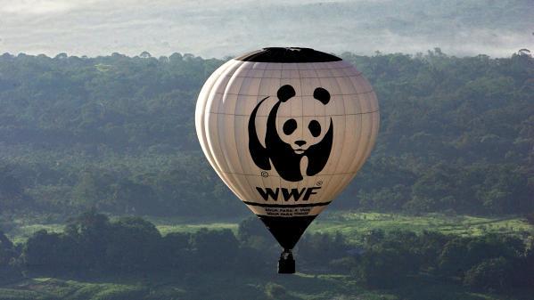 """Le WWF lance un appel pour que la France adopte un """"filet de sécurité"""" afin de gérer la crise du Covid-19"""