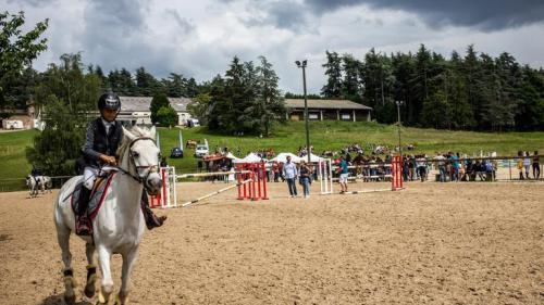 """""""Il ne nous restait que quatre jours d'aliments pour nos chevaux"""" : les centres équestres soutenus par un fonds solidaire"""