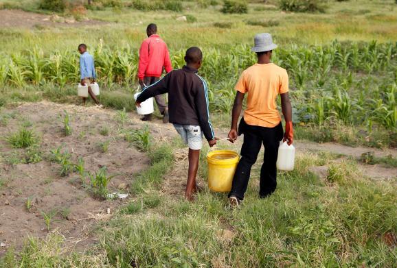 Des habitants reviennent d\'un forage où ils ont pris de l\'eau, près de Bulawayo, dans le sud-ouest du Zimbabwe. Photo prise le 17 janvier 2020.