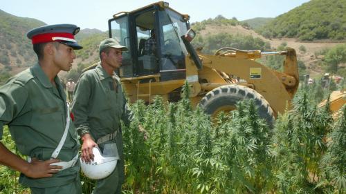 Maroc : le coronavirus change les routes du cannabis vers l'Europe