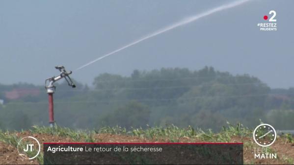 Agriculture : le retour de la sécheresse