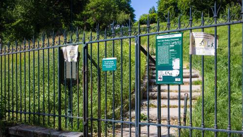 """Parcs et jardins : """"Les Parisiens sont suffisamment intelligents pour comprendre l'enjeu de cette réouverture"""", explique une adjointe à la mairie de Paris"""