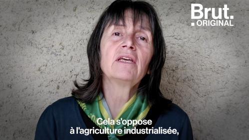VIDEO. Défendue par Emmanuel Macron, qu'est-ce que la souveraineté alimentaire ?