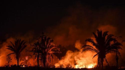 Brésil : les feux ravagent de nouveau l'Amazonie