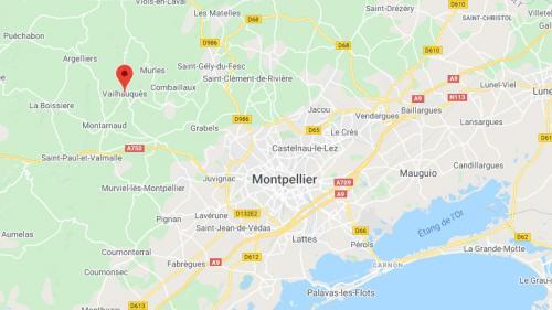 """Hérault : le pharmacien jugé pour avoir vendu un """"remède"""" contre le Covid-19 a été relaxé, le parquet fait appel"""