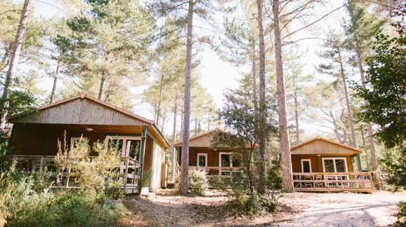Des bungalows au camping de Belezy (Vaucluse).
