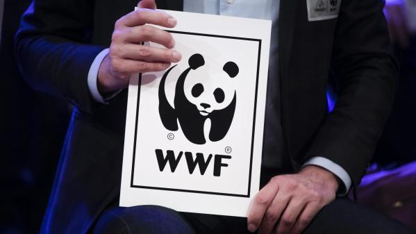 Le billet vert. Le WWF appelle à une vraie relance verte