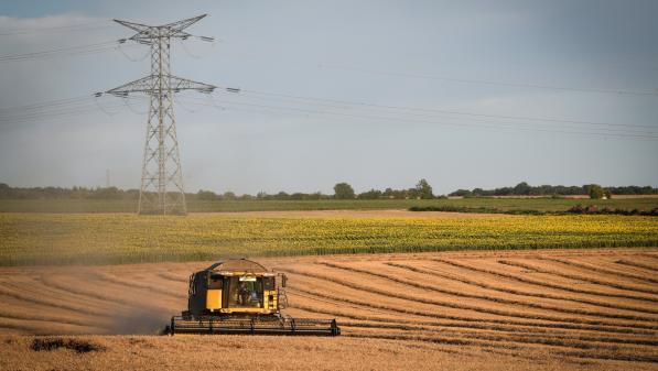 """Mauvaises récoltes de céréales : """"La principale cause, c'est la météo"""", explique le président de la Chambre régionale d'agriculture du Centre-Val de Loire"""
