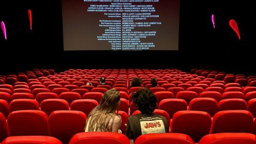 """Cinémas : il y a """"un problème d'offre"""", """"aucun film américain"""" alors que l'été Hollywood représente """"70% des entrées"""", alerte la Fédération nationale"""
