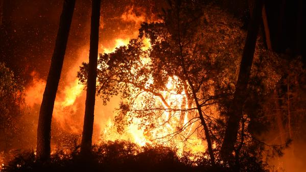 Incendie d'Anglet : la police scientifique sur le terrain
