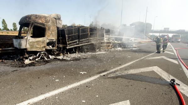 Chauffeur tué à Montauban : le gendarme est sorti de garde à vue, aucune poursuite à ce stade