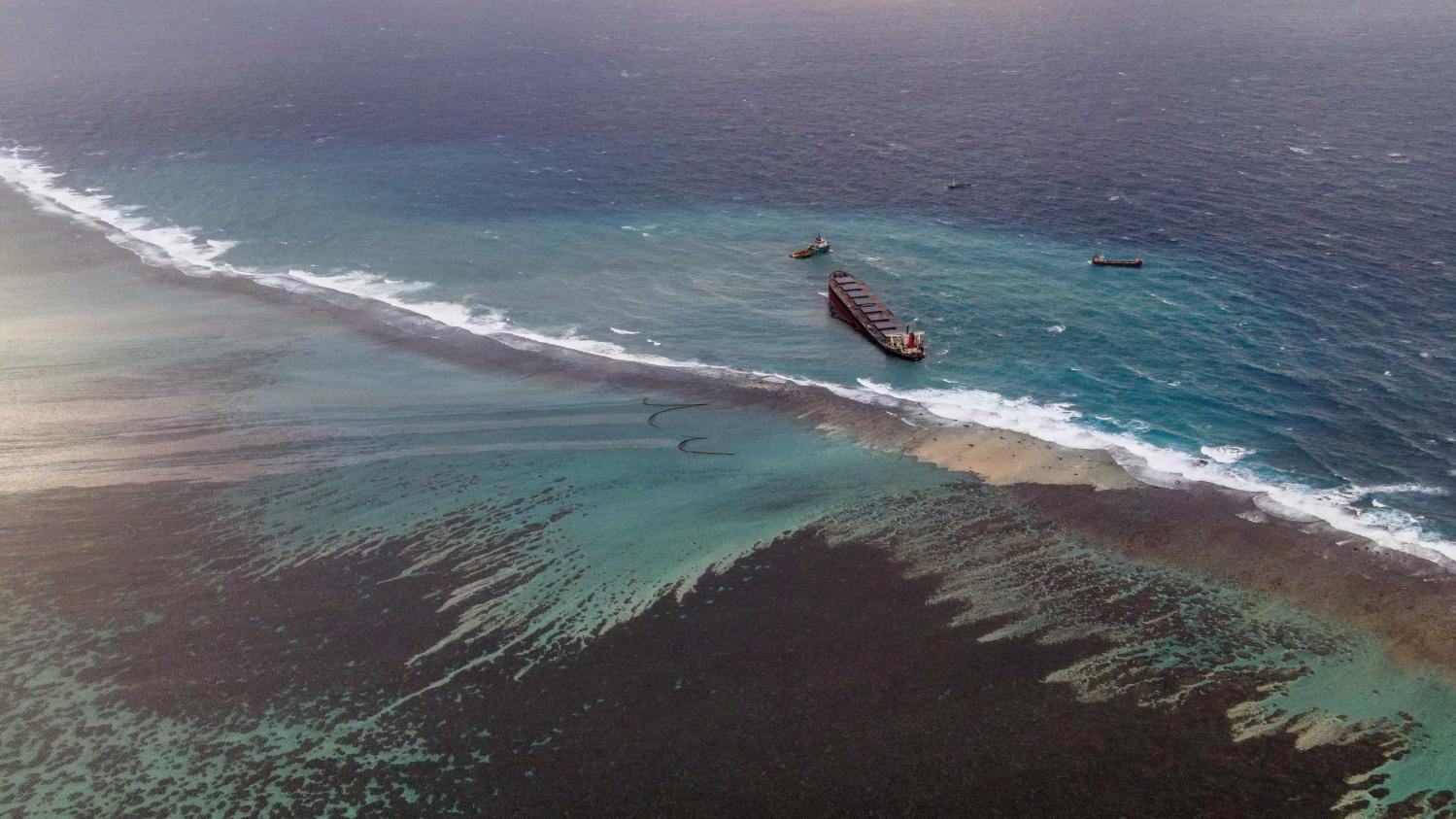 Marée noire à l'île Maurice : le cheveu, absorbant d'hydrocarbures