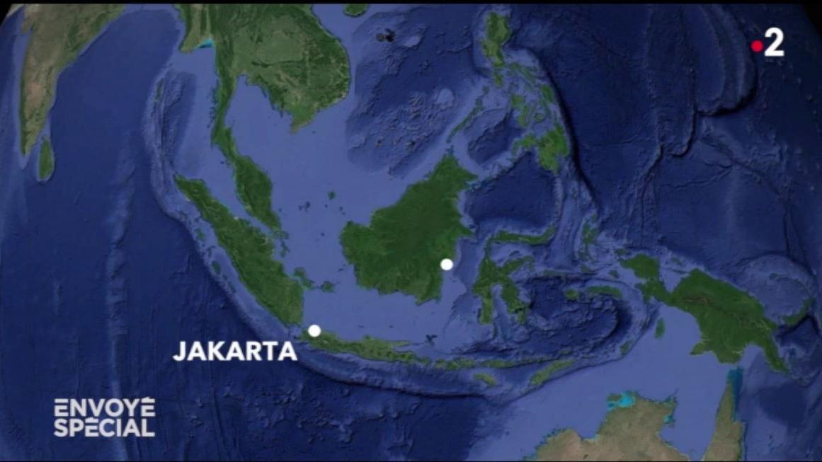 VIDEO. Jakarta, capitale de l'Indonésie menacée par les eaux, se prépare à déménager