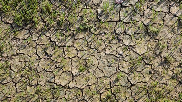 Dérèglement climatique : le pré-rapport alarmiste des experts du Giec