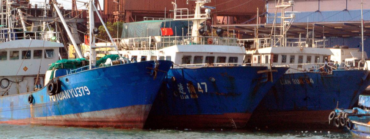 Les bateaux-usines pillent les eaux poissonneuses du golfe ...Les Ondes De Guinee