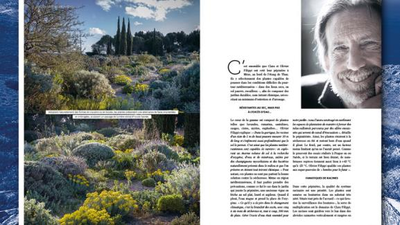 The garden of the nurseryman Olivier Filipi, in the south of France.