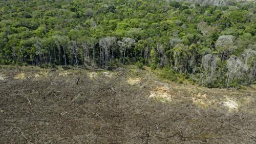 Amazonie :le chefRaoniaccuseJairBolsonarode crime contre l'humanité