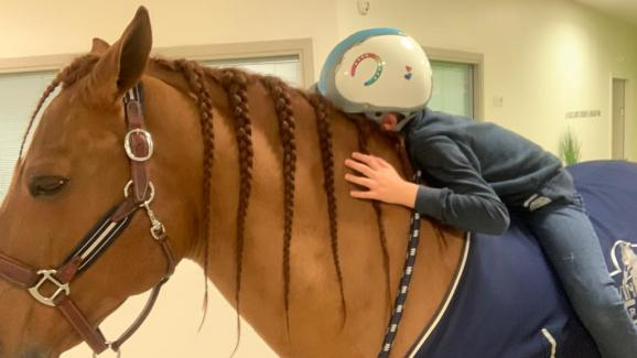 Peyo surprises scientists and researchers.  This retired horse from the show, works miracles in palliative care, with patients who sometimes no longer even speak with their loved ones.