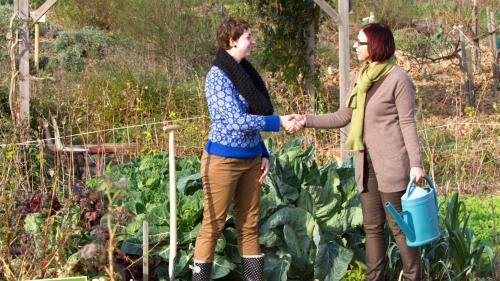 Vous cherchez une parcelle de potager à cultiver ? Vous êtes prêt à prêter une partie de votre jardin ? Un site peut vous mettre gratuitement en relation.