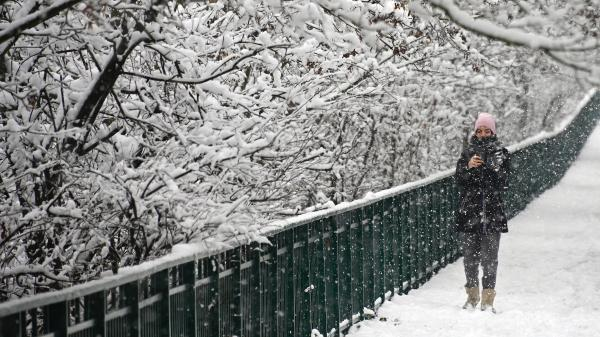 DIRECT. Quelque 5 000 foyers privés d'électricité en Alsace en raison des chutes de neige