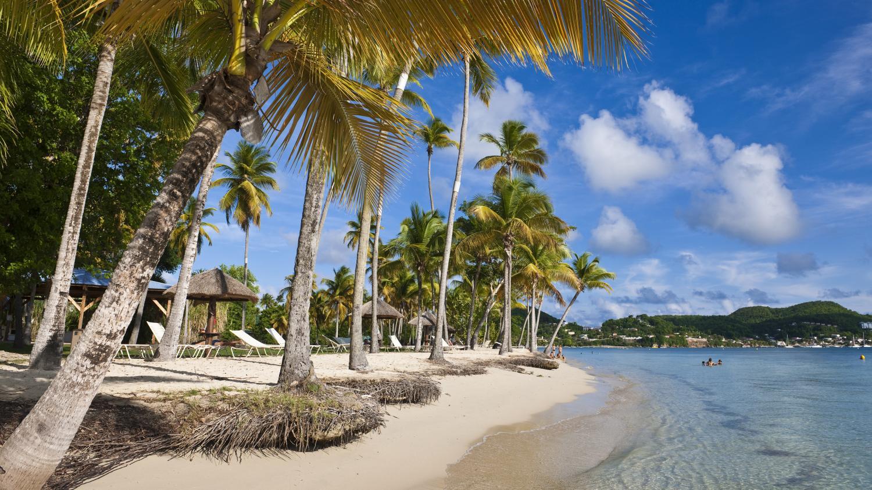 Image Coronavirus : Martinique et Guadeloupeprivéesde touristes