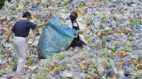 Lizzie, la petite anglaise de 9ans qui a lancé une pétition contre l'exportation des déchets plastiques
